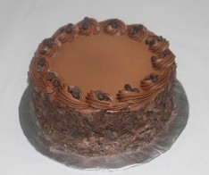 Swiss Chocolate Cake